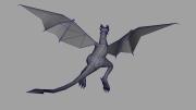 Dragon_WF_02